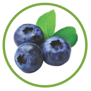 blueberry healty skin